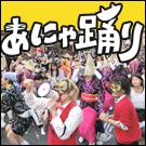 猫版阿波踊り奇祭「あにゃ踊り」
